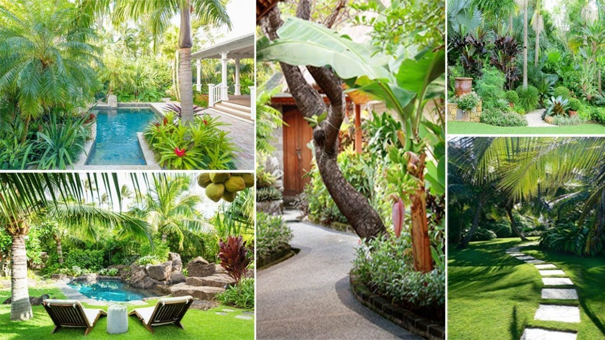 10 Awesome Tropical Garden Ideas for Your Home | DIY Garden