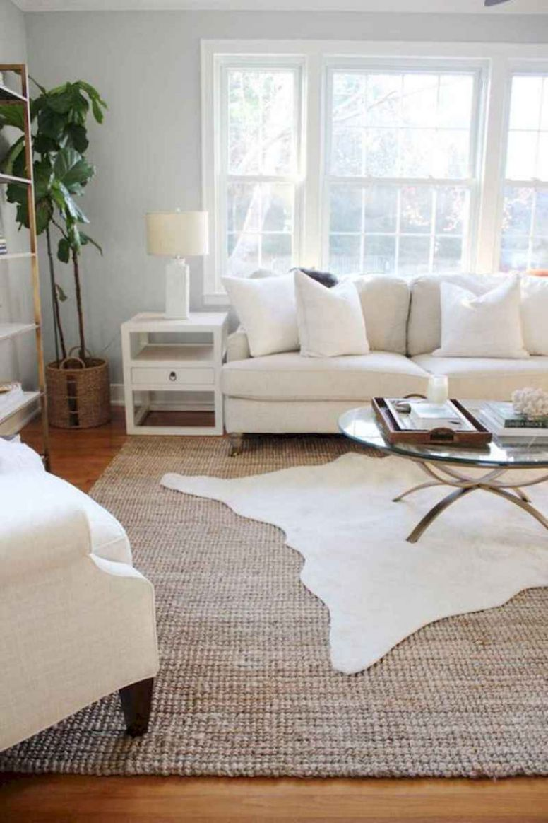 10 Best Rug Living Room Farmhouse Decor Ideas (10) - CoachDecor