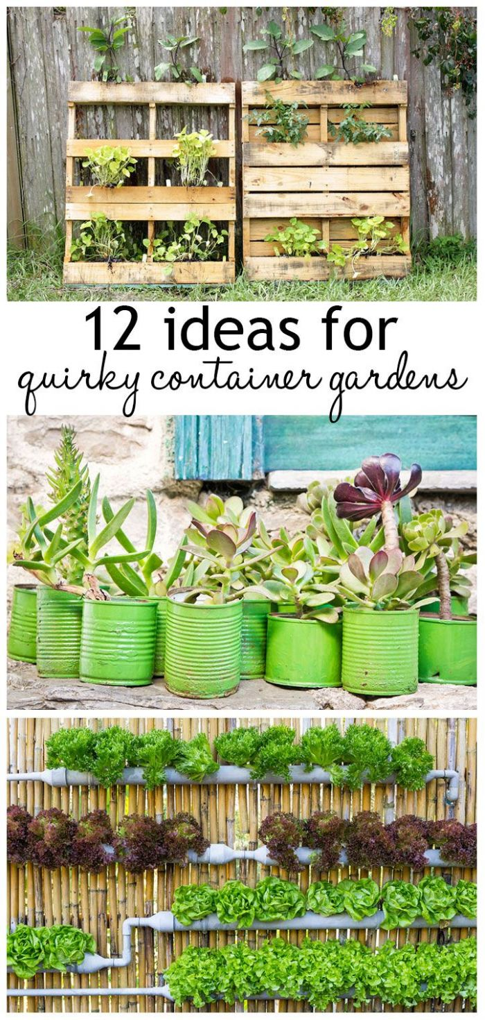 10 ideas for quirky plant containers to jazz up your garden ..