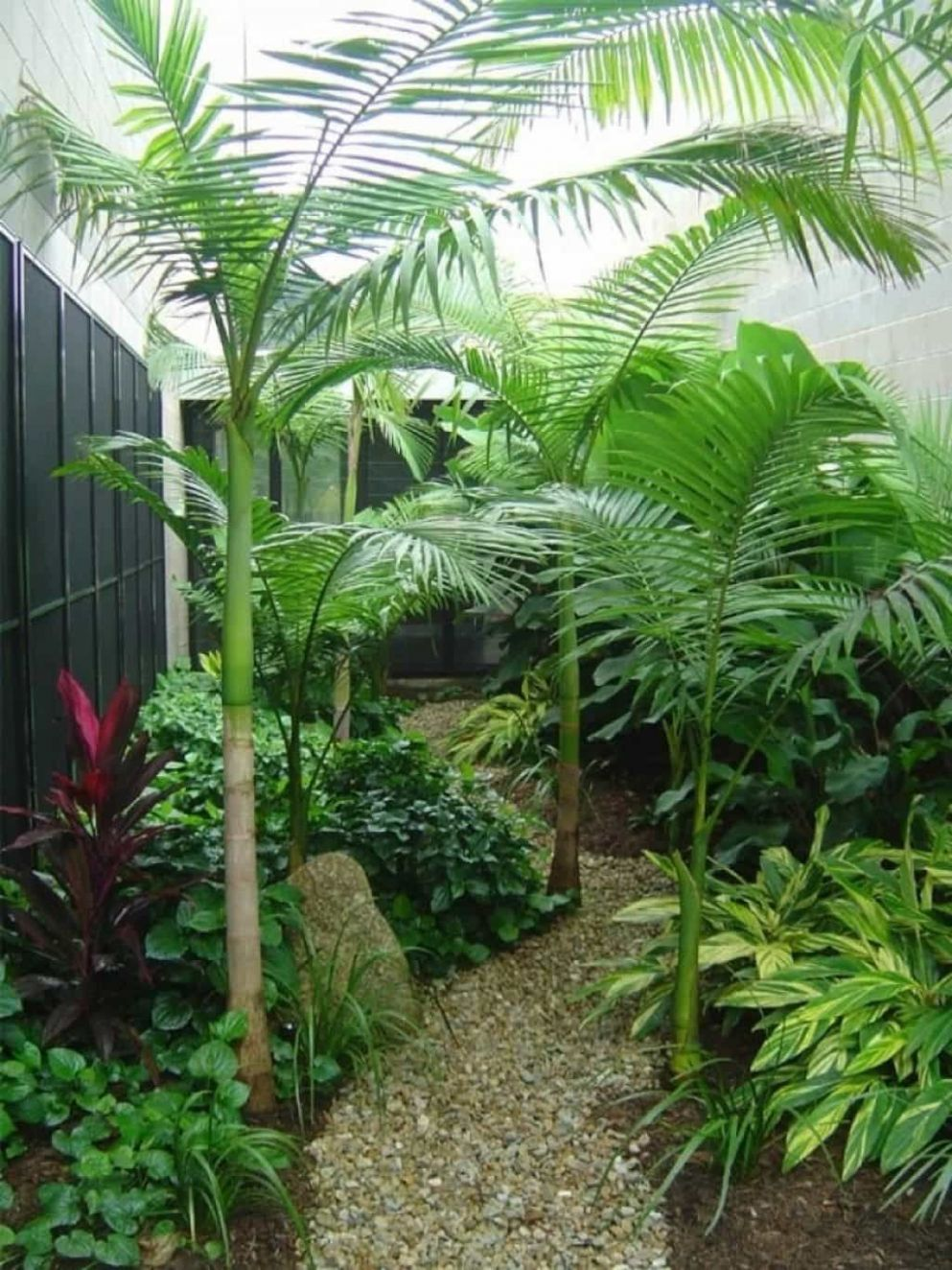 10 Refreshing Tropical Landscaping Ideas | Tropical backyard ...