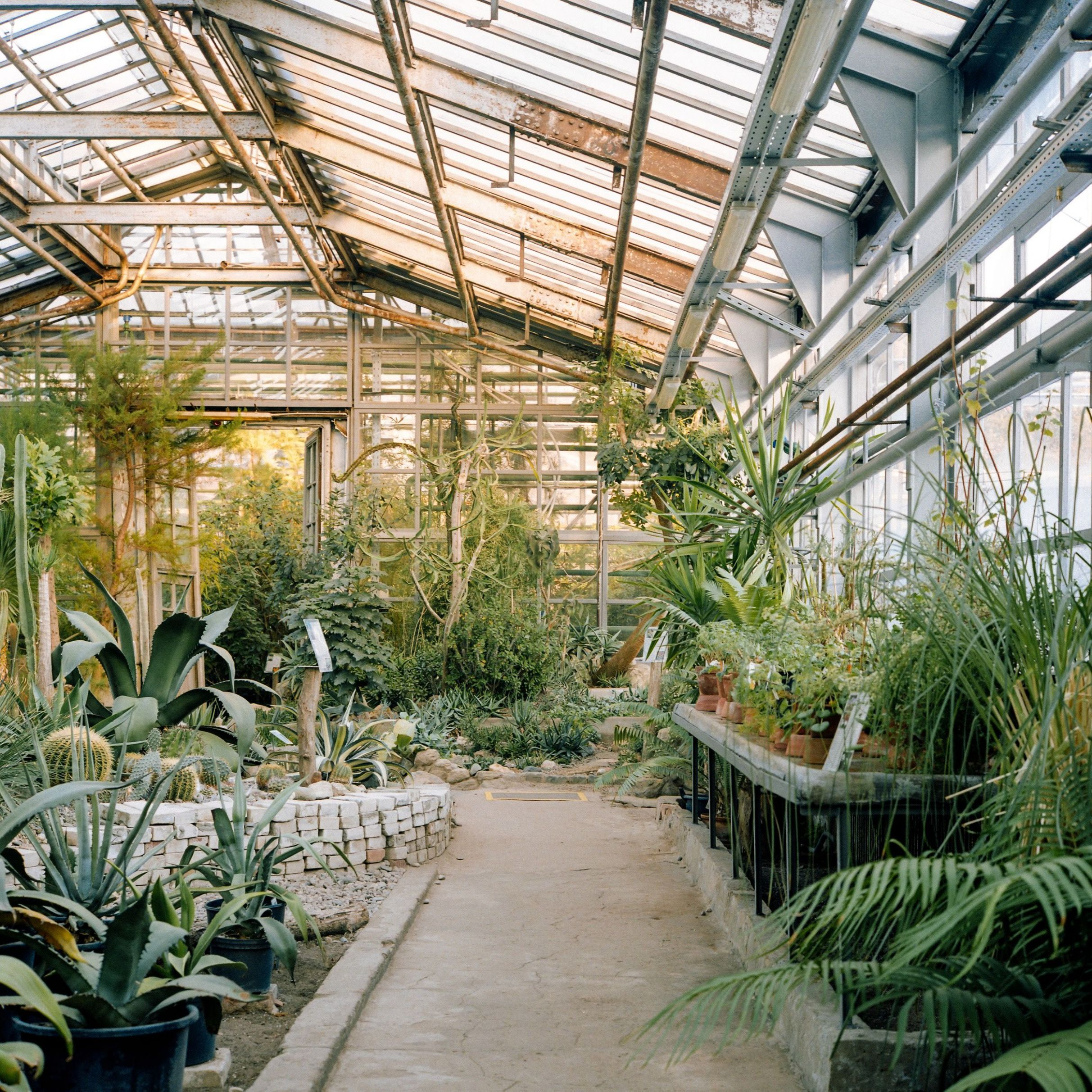 10 Types of People Who Need Greenhouse Inspiration | Greenhouse ..