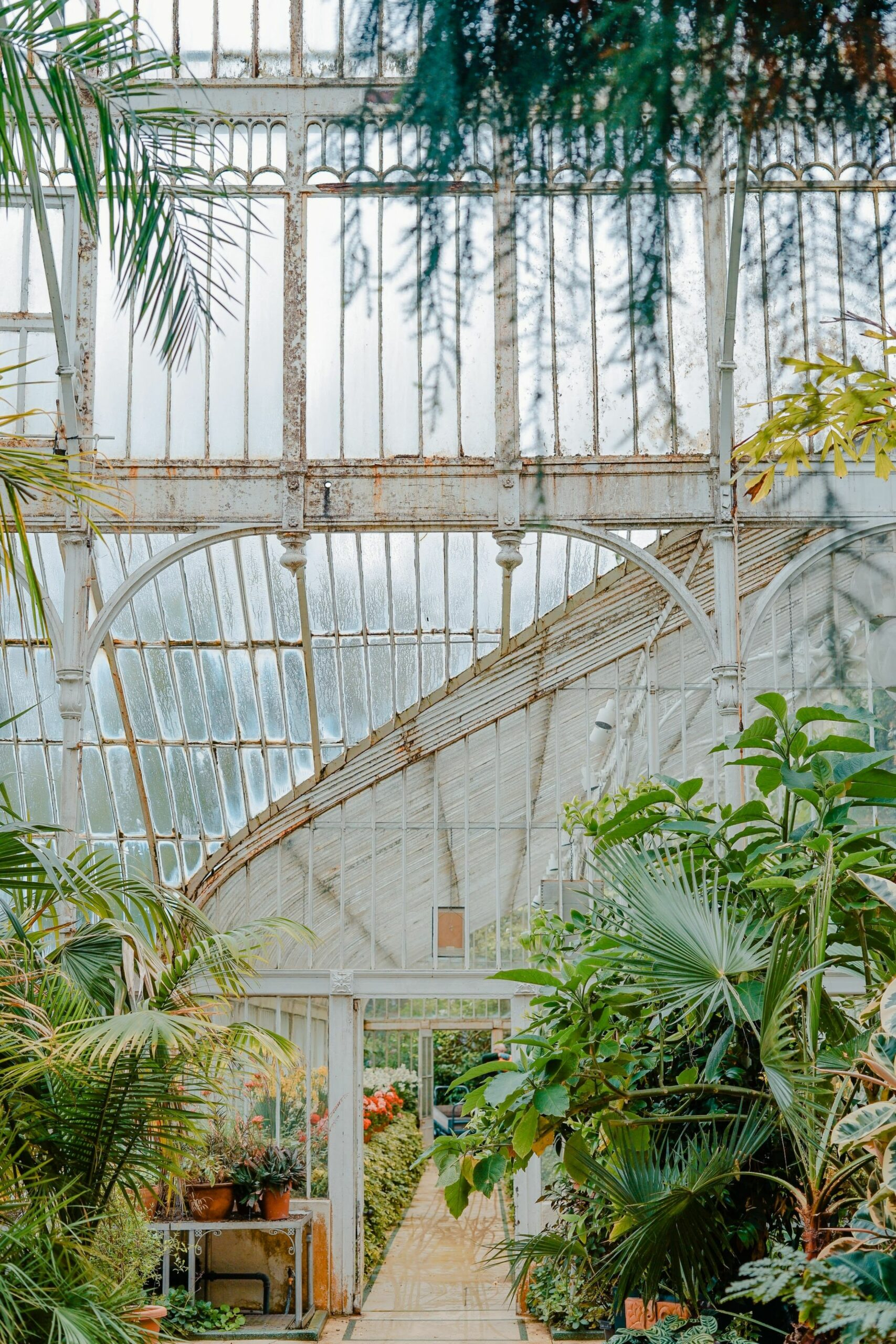 10 Types of People Who Need Greenhouse Inspiration | Weißen gärten ..