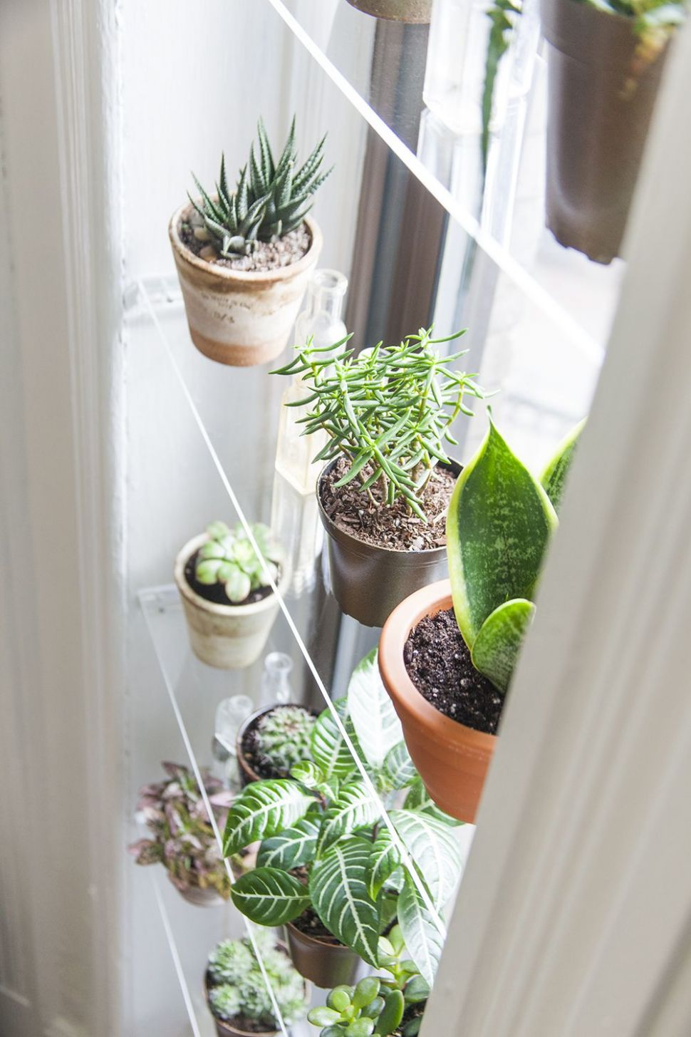 11 Brilliantly Creative DIY Shelving Ideas | Window plants, Plant ...