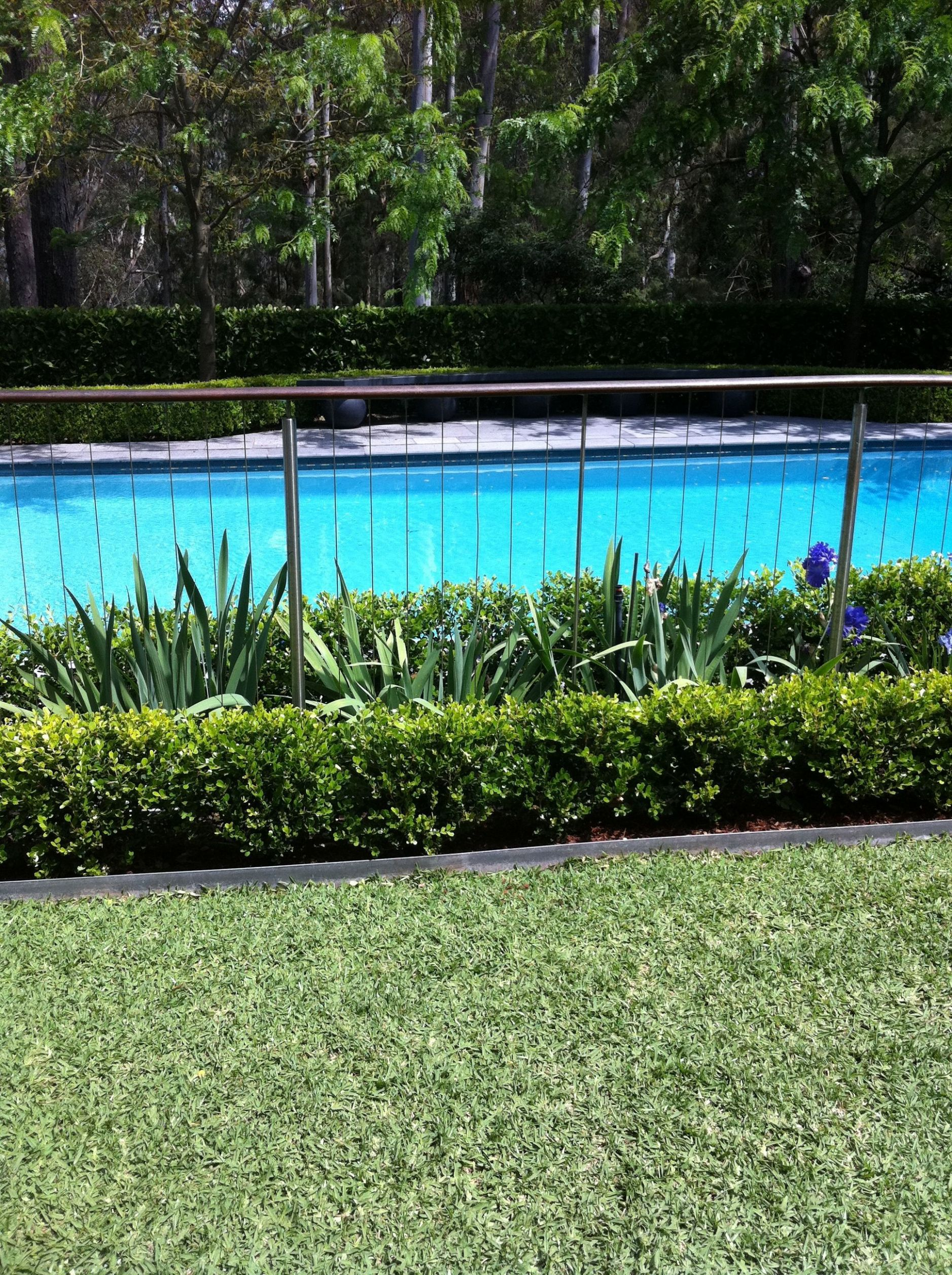 11+ The New Inspiration for Pool Fence Ideas 11 | Hinterhof-pool ..