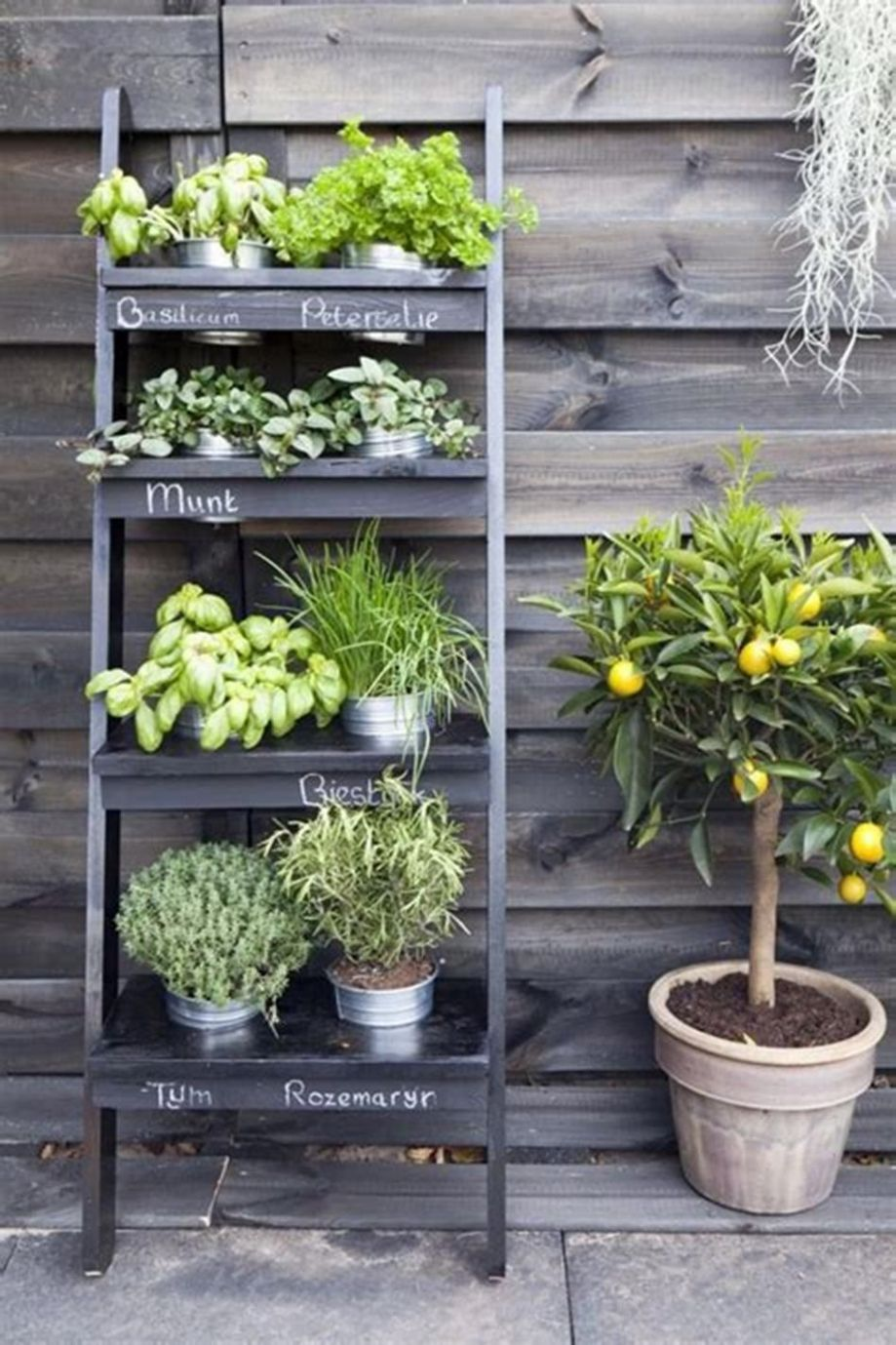 12 Amazing Ideas Small Herb Garden Ideas You Will Love 12 | Small ..