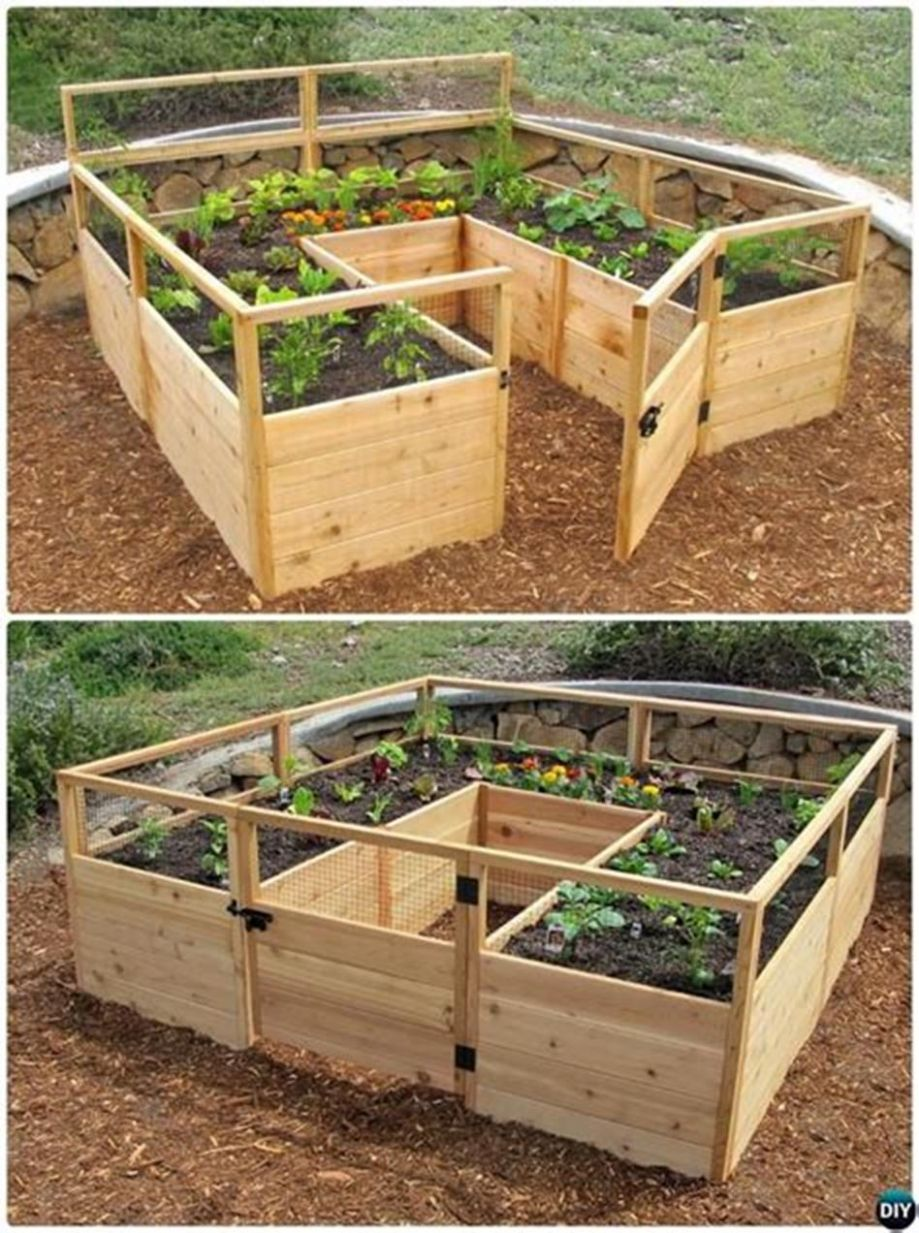 12 Beautiful DIY Backyard Vegetable Garden Ideas - DecoRecent