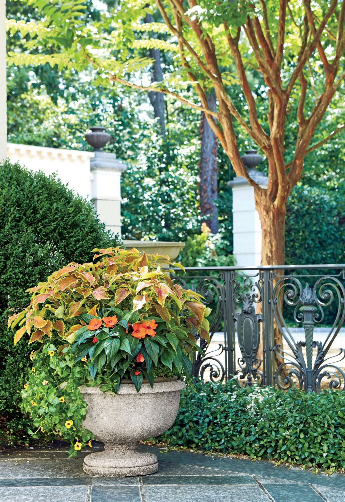 12 Container Gardening Ideas | Southern Living