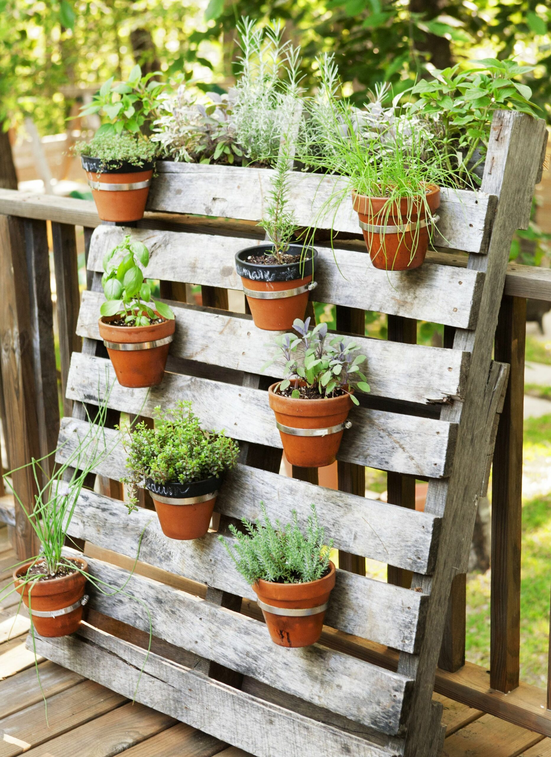 12+ Small Garden Ideas - Small Garden Designs