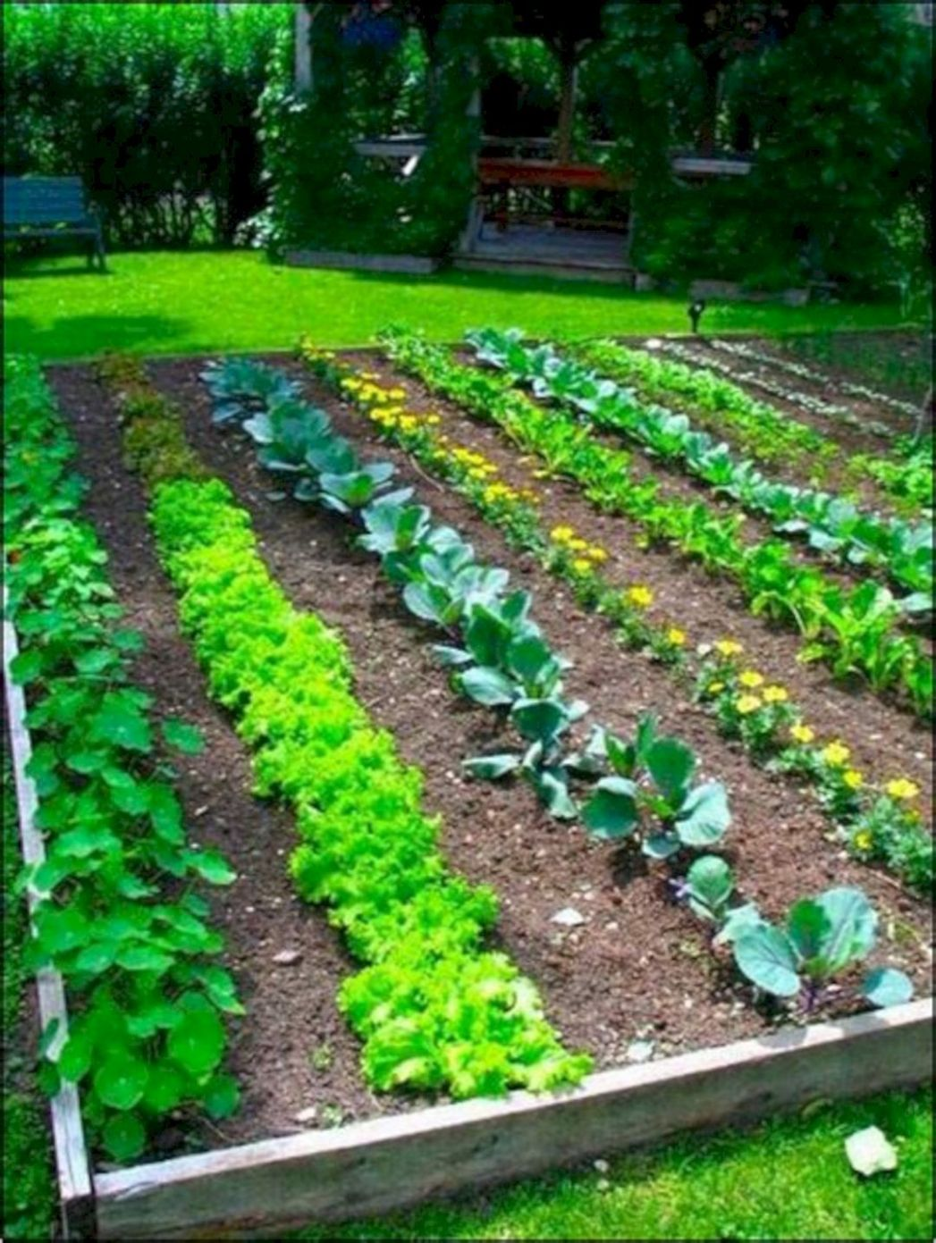9+ Easy Vegetable Garden Layout Ideas For Beginner | Garden ..