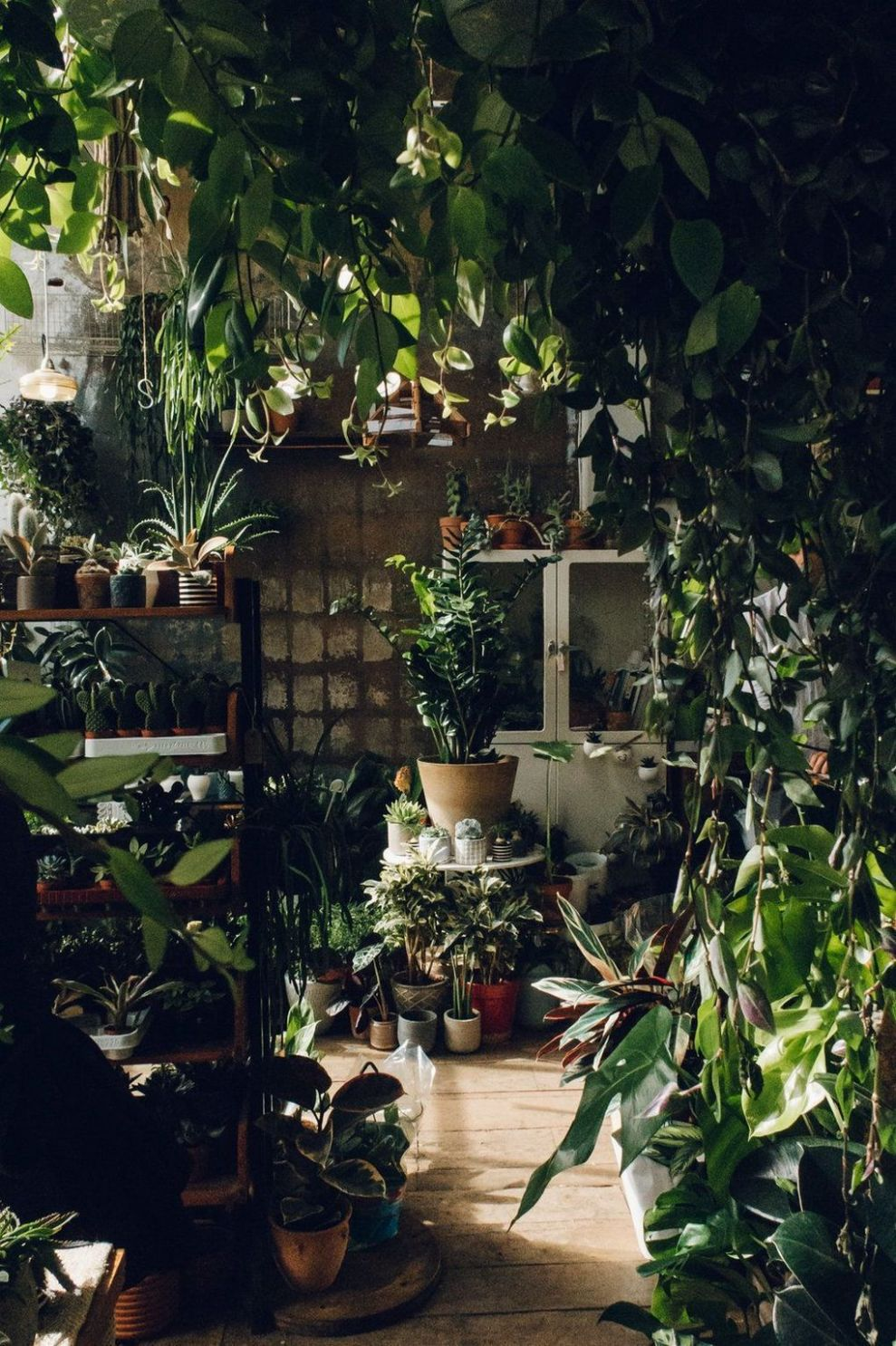 9 Ideas How To Create Your Own Indoors Jungle | Indoor-garten ..