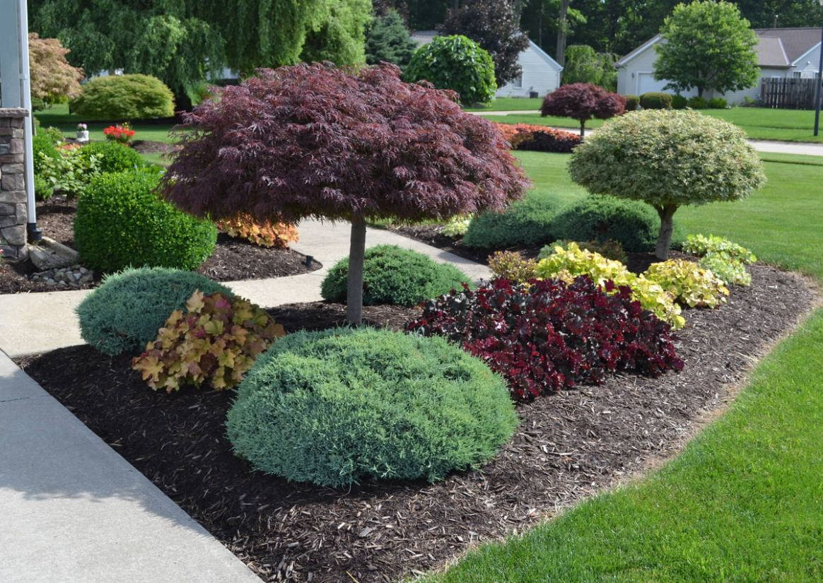 9 Landscaping Ideas with Photos. - Mike's Backyard Nursery