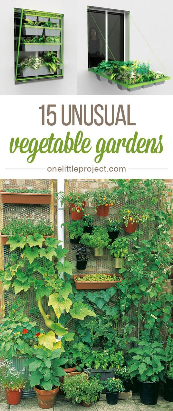 9 Unusual Vegetable Garden Ideas - garden ideas vegetable