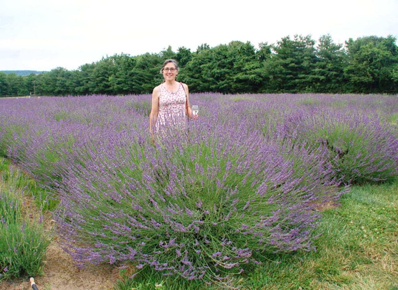 A REAL Lavender for the South! Sweet! | Southern Living - garden ideas lavender