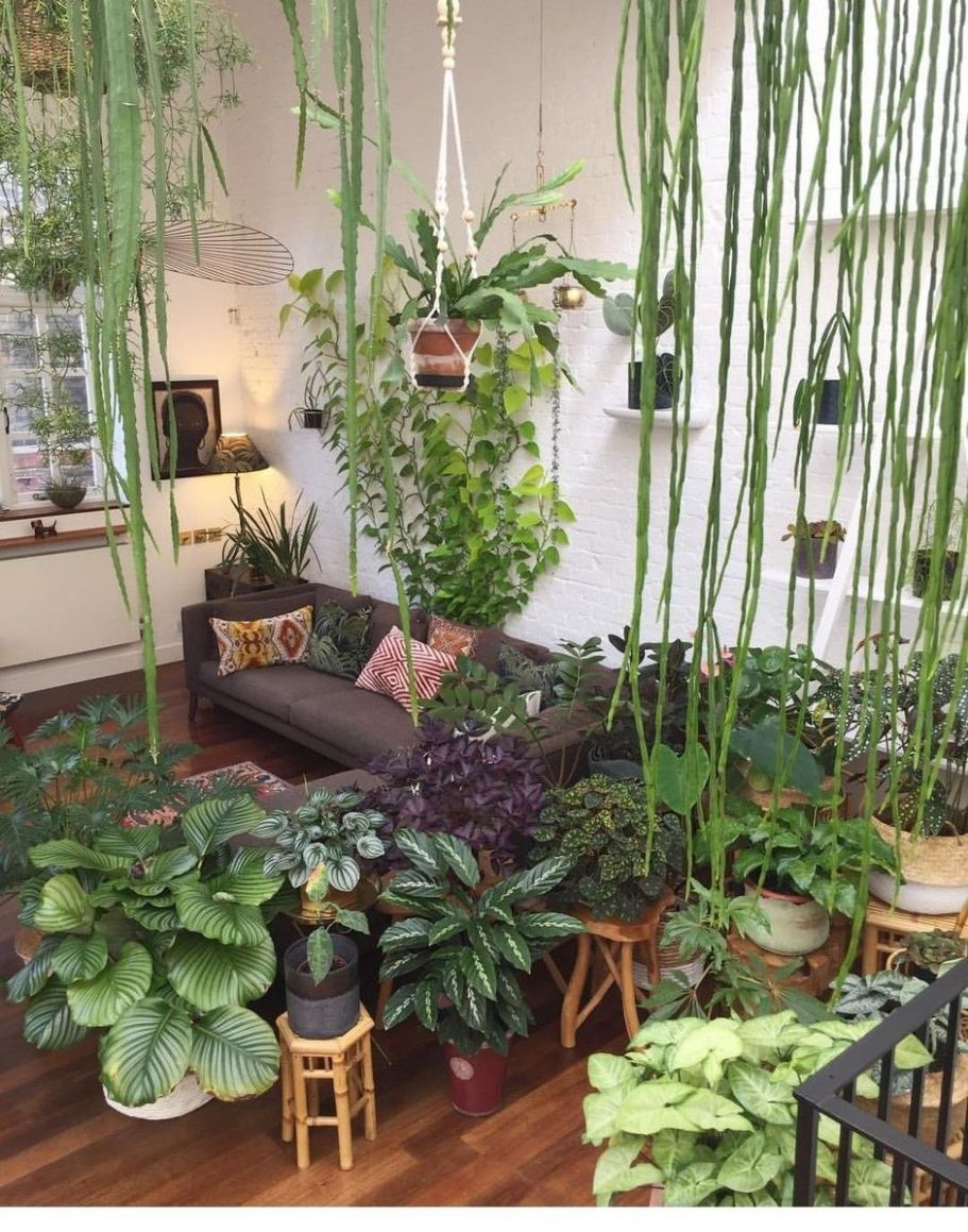 Amazing Indoor Jungle Decorations Tips and Ideas 9 - Hoommy