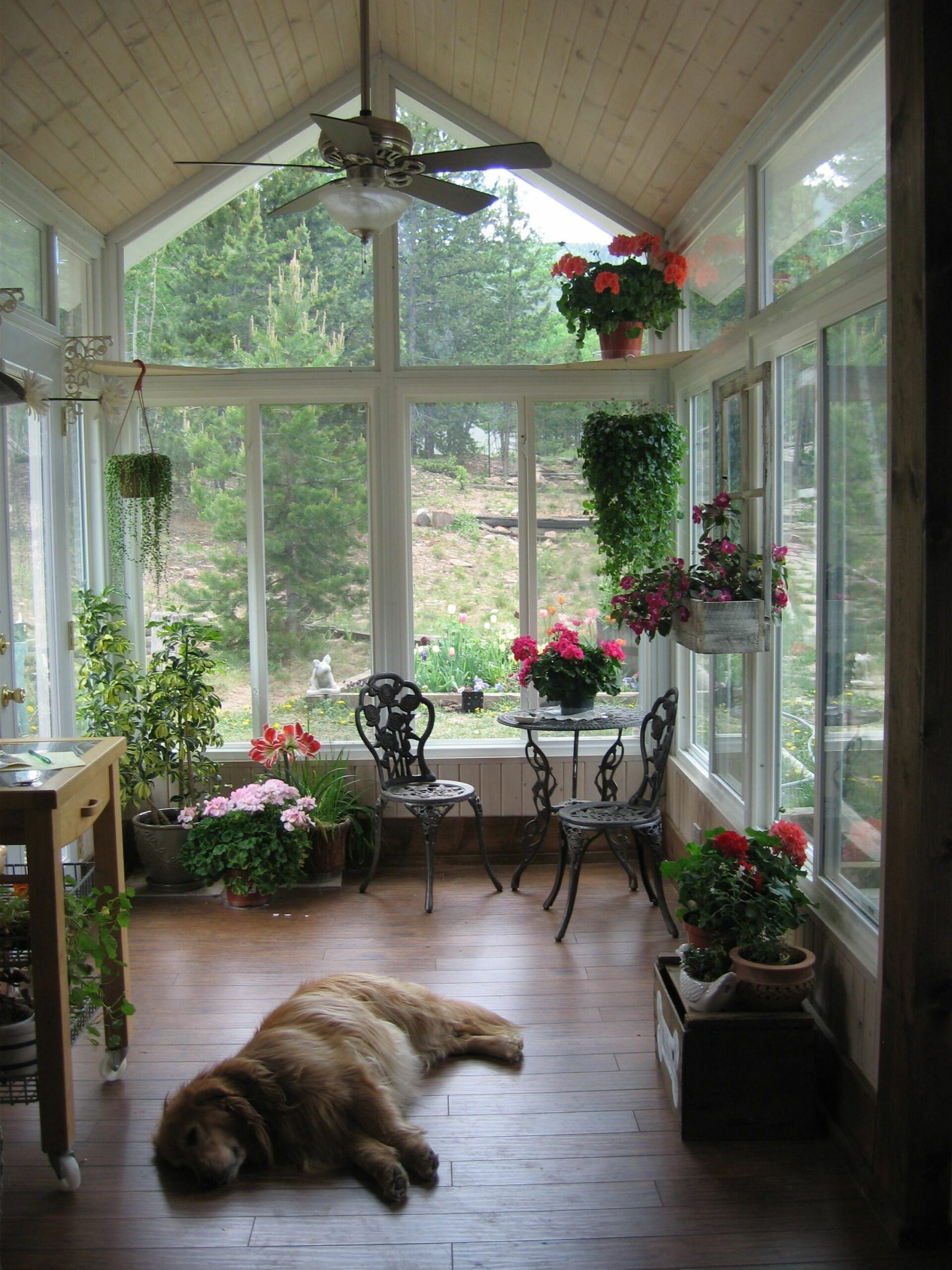 An indoor plant or two creates a much more inviting environment in ..