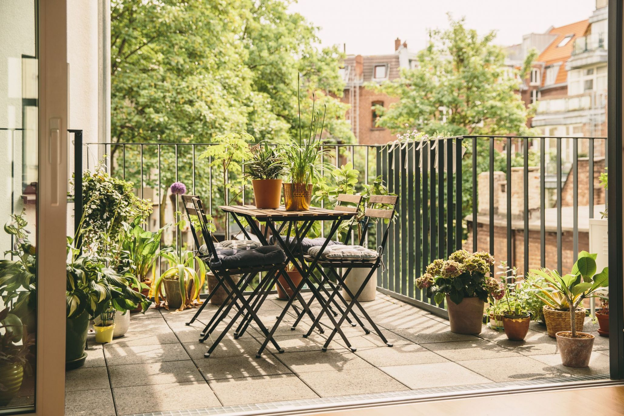 Balcony Garden Ideas - Plants, Furniture and Affordable Updates - balcony trellis ideas