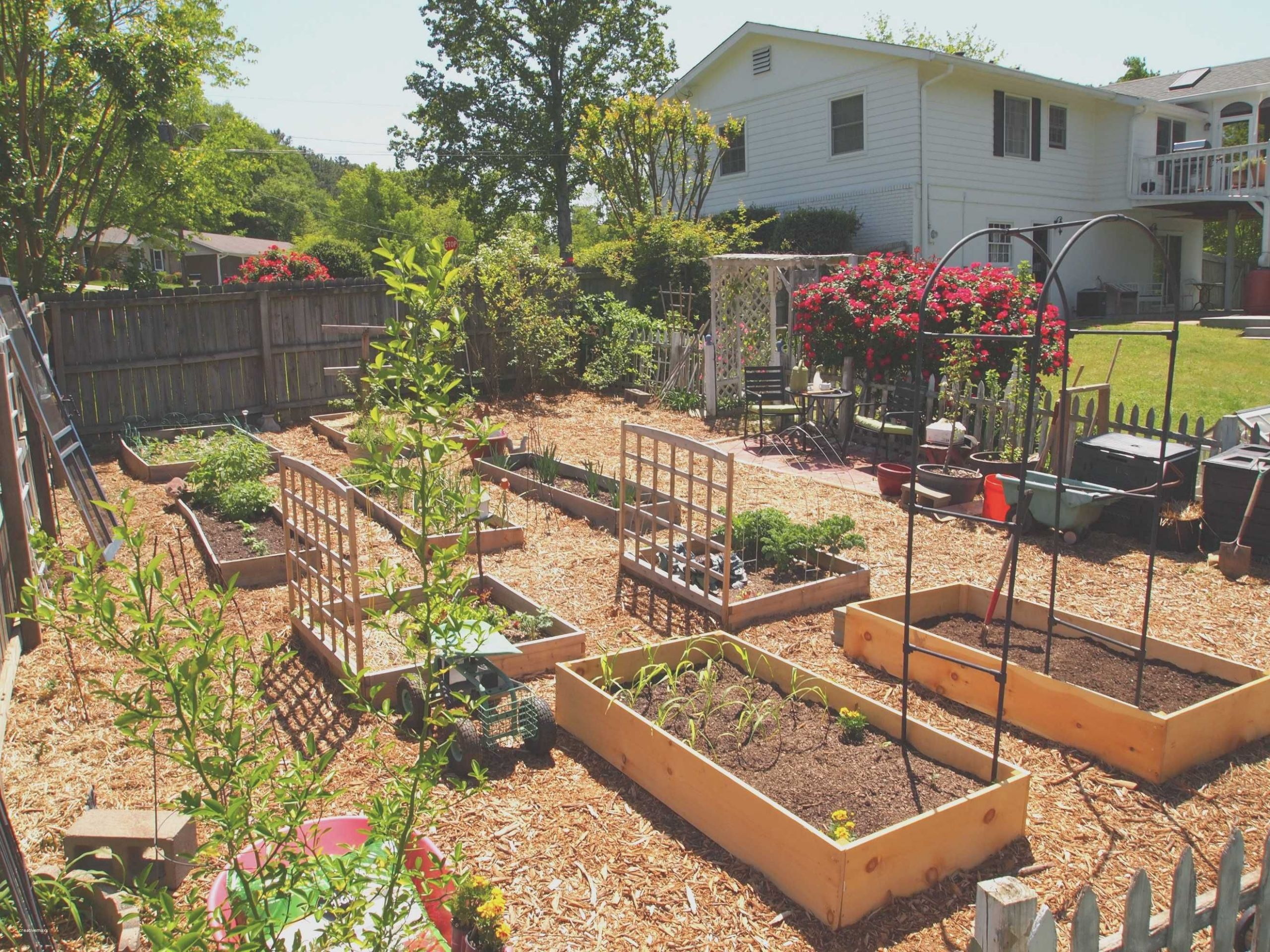 Beautiful Vegetable Gardening Ideas For Small Spaces | Garden ..