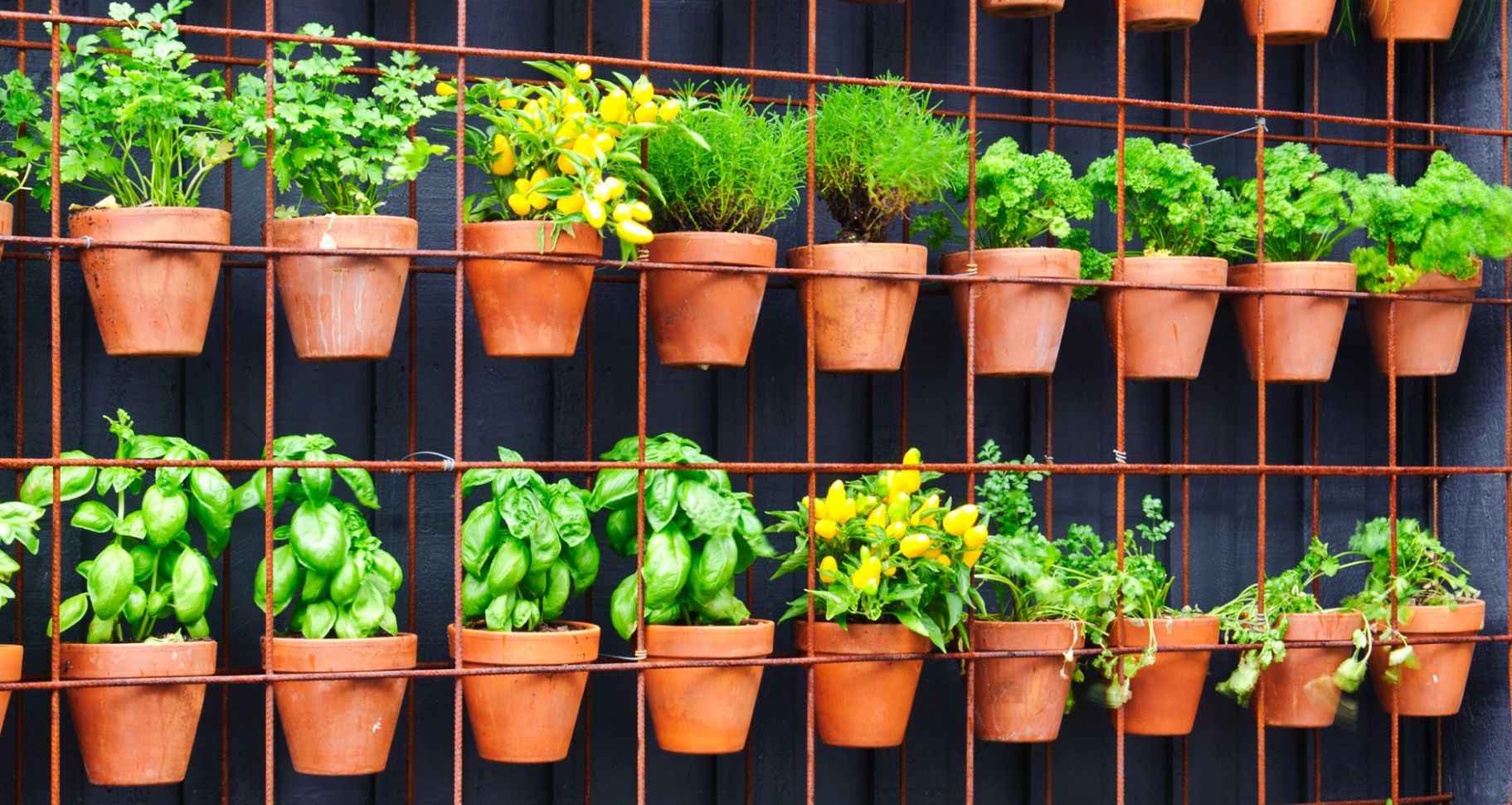 Big Gardening Ideas For Small Spaces - Farmers' Almanac