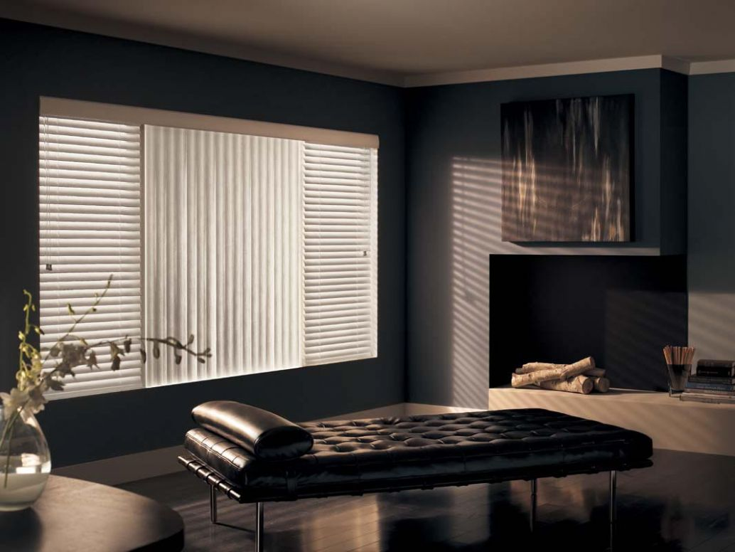 Blinds For Large Living Room Windows | Window Treatments Design Ideas - window blind ideas for living room