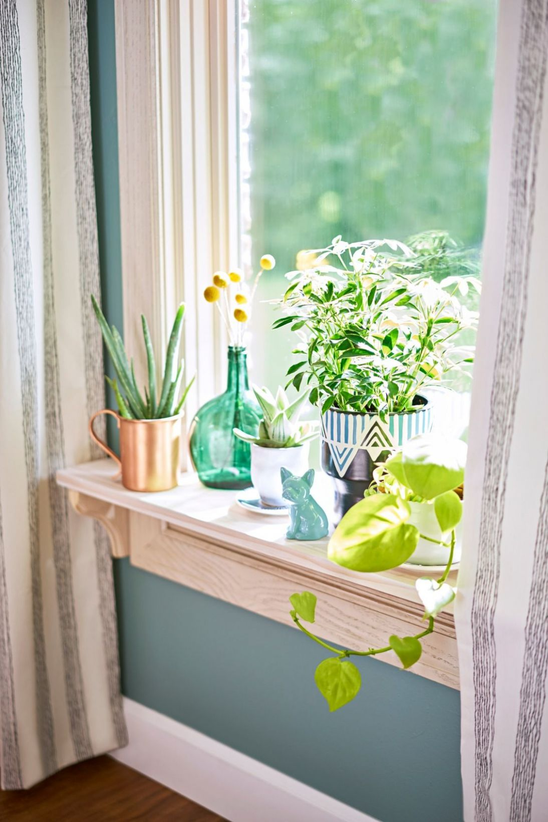 Bring the outdoors in! A windowsill is the perfect spot for a mini ..