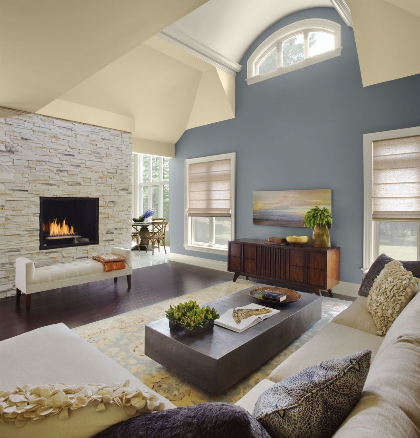 Color For Living Room With Cathedral Ceiling | Perfect living room ..