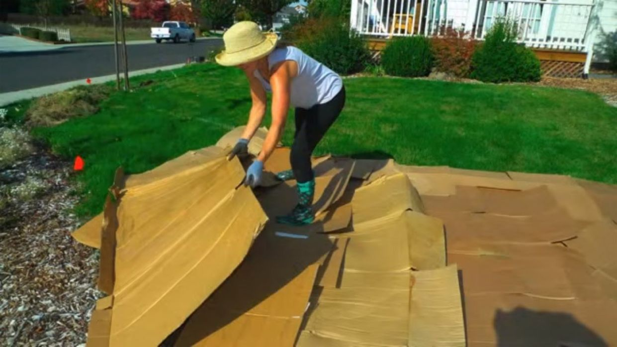 Convert Your Lawn by Sheet Mulching - backyard ideas to get rid of grass