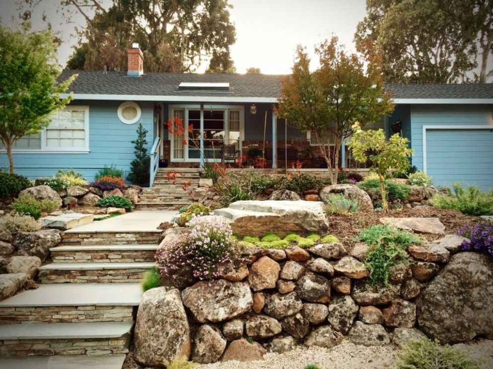 Create a Beautiful Drought Resistant Front Yard   Sonoma Magazine