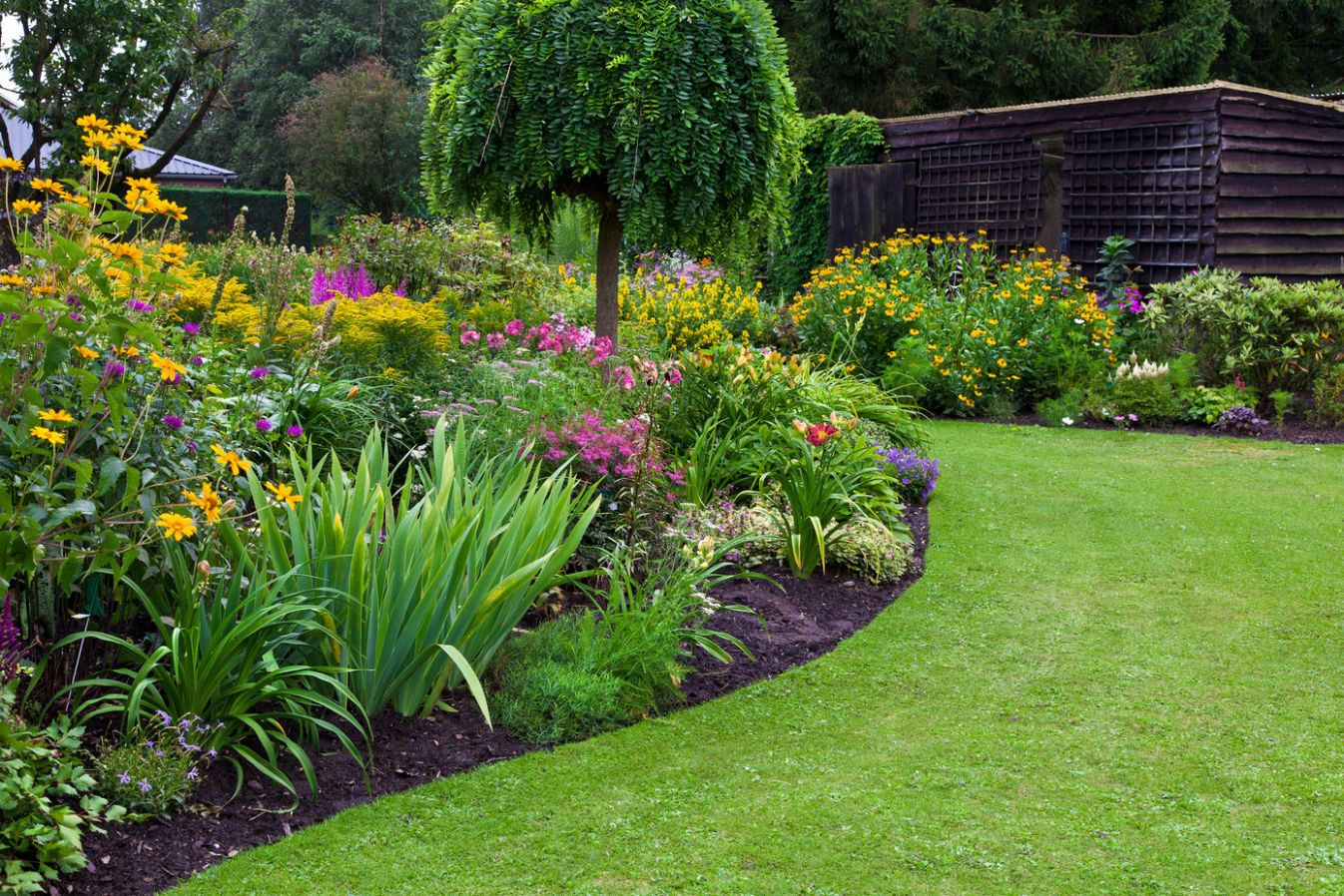 Creative Ideas to Landscape a Slope - Lawnstarter