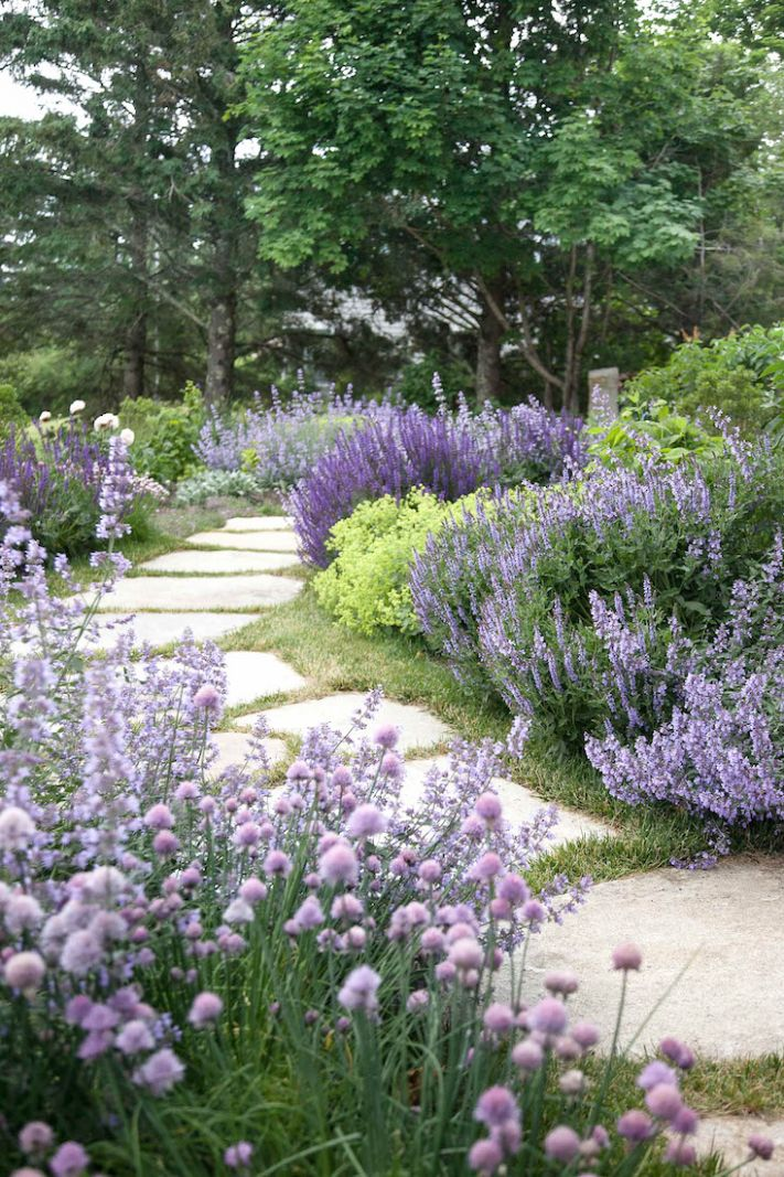 Creative Landscape Ideas with Big Impact - garden ideas lavender