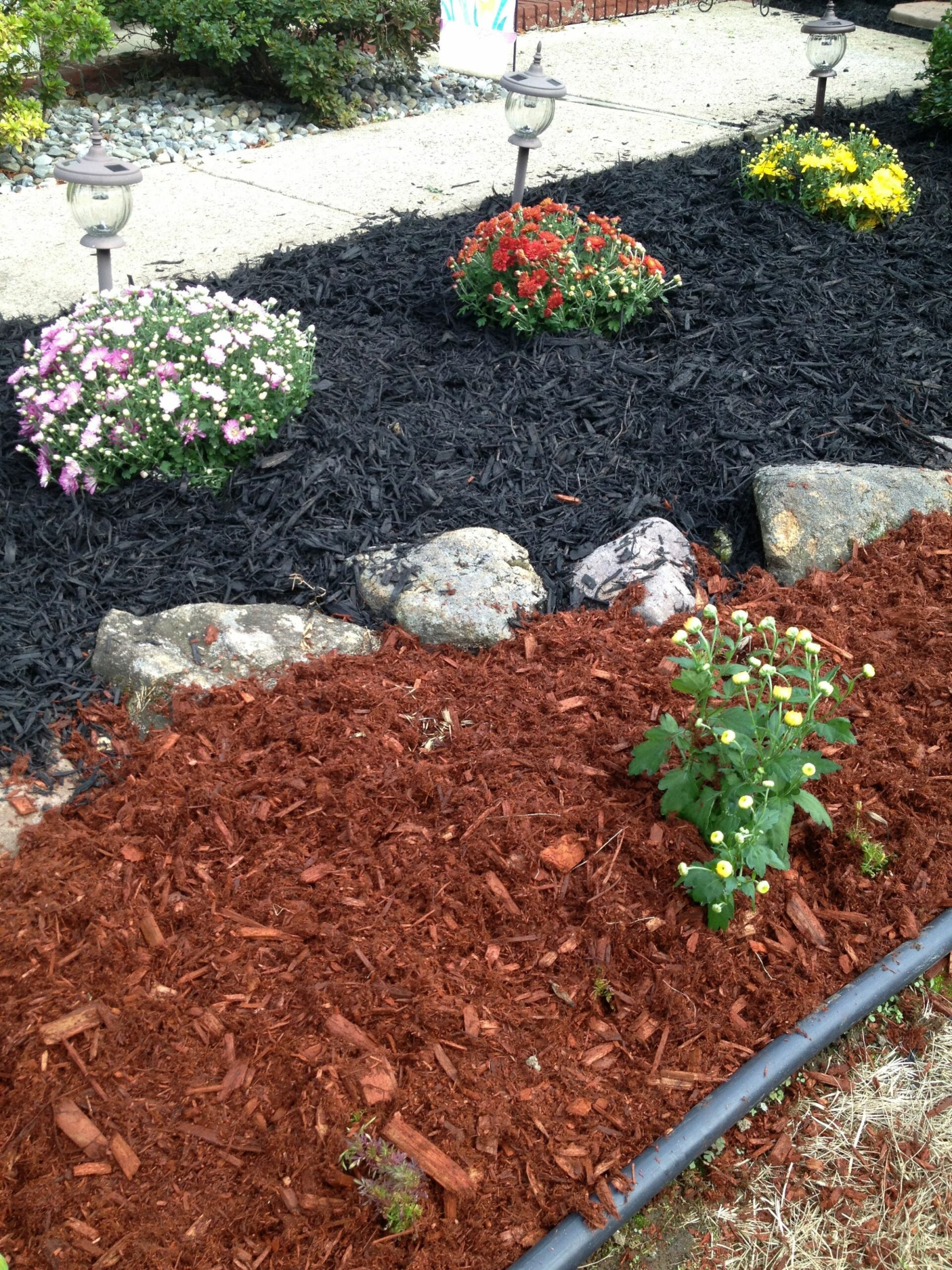 Different color mulch by Ally G. (With images) | Mulch landscaping ..