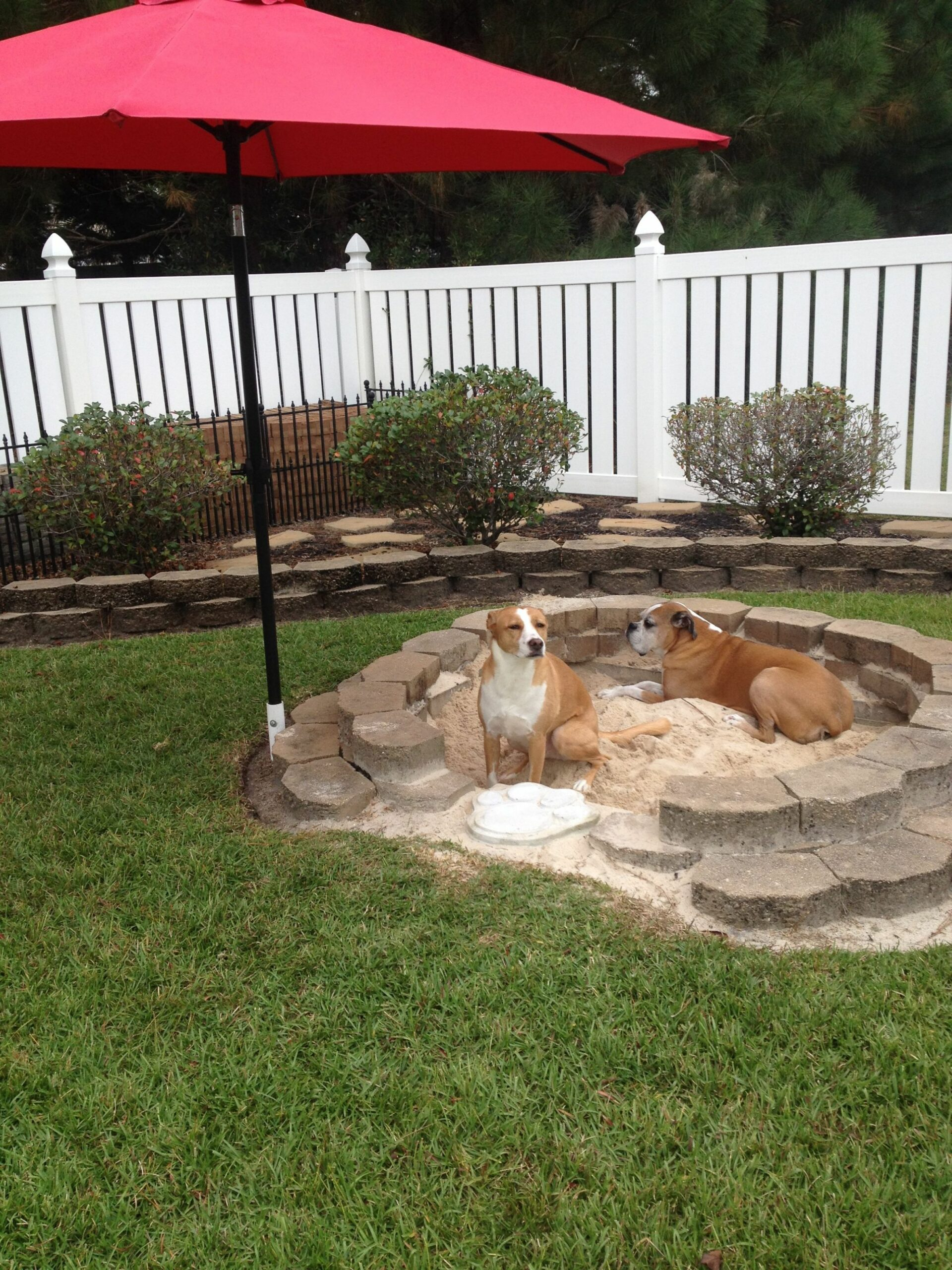 """DIY doggy sandbox! For those who """"dig it""""! Just dig a hole and .."""