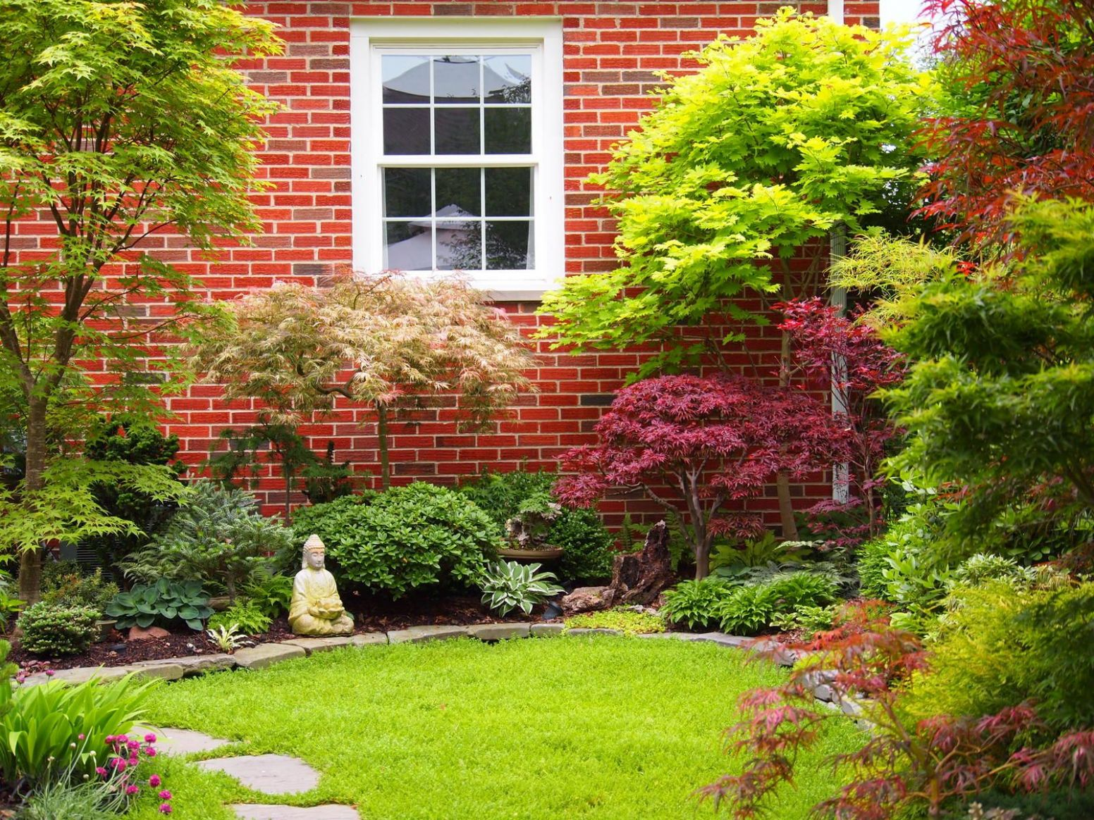 Ever consider going lawnless? | Japanese maple garden, Japanese ..