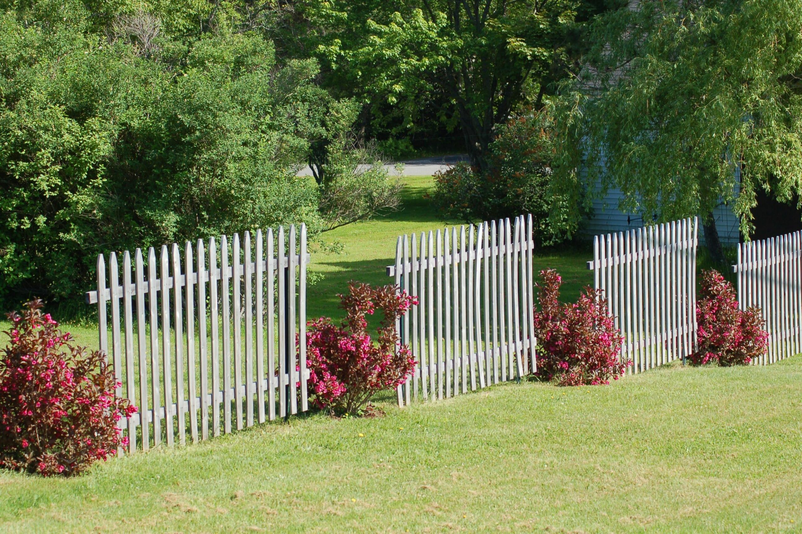Fence Line Landscaping Ideas for Creative Homeowners - garden ideas along fence line