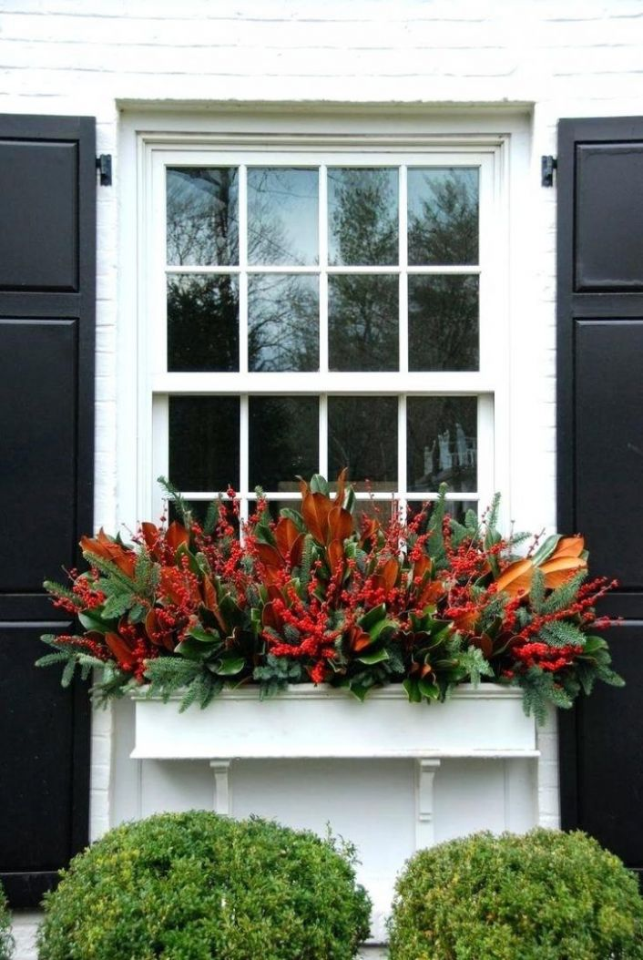 Find This Pin And More On Winter Plantersplants Suitable For ..