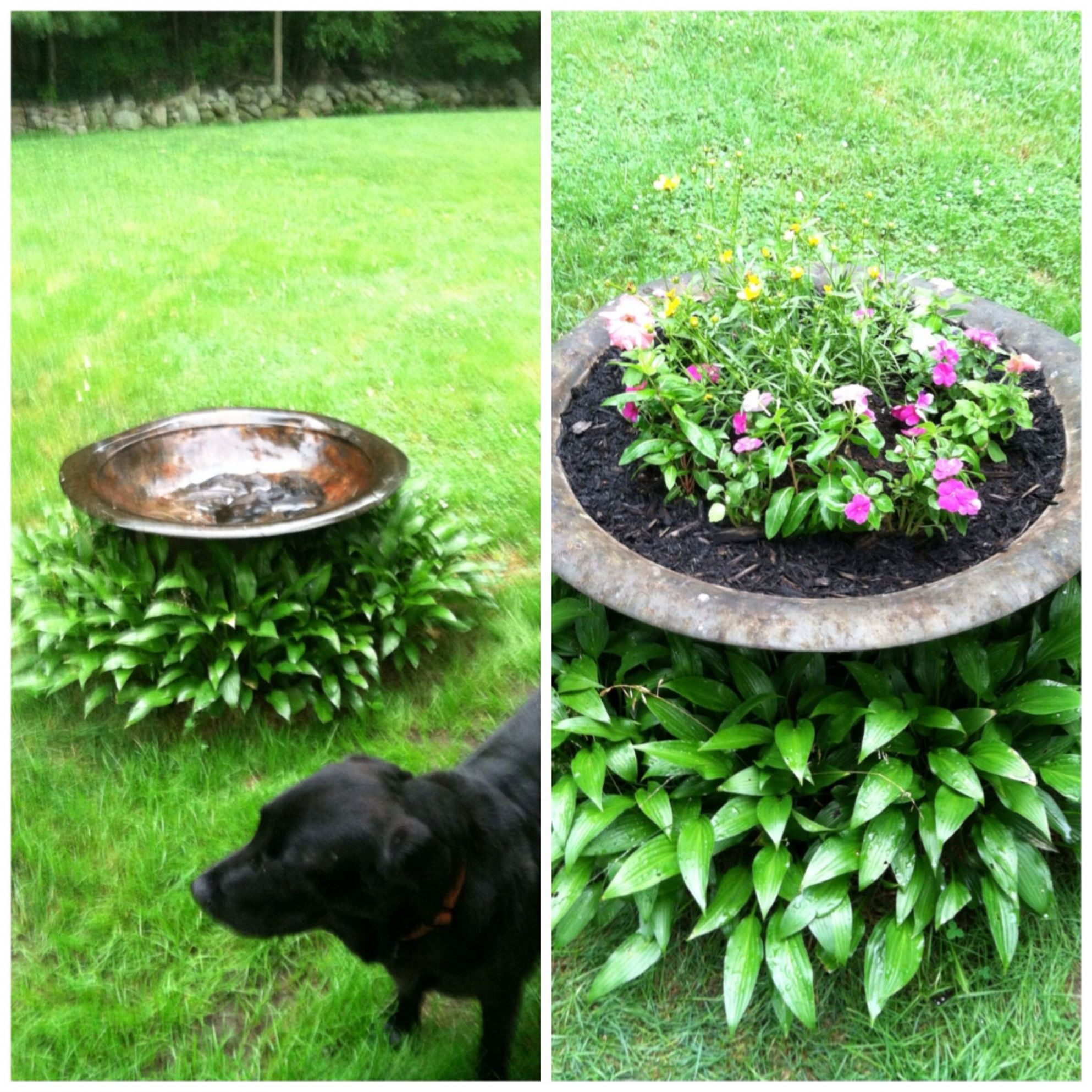 From crappy to happy! An old fire-pit that wasn't being used to a ...