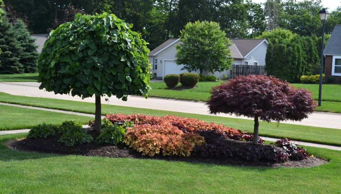 Front Yard Landscaping Ideas Zone 9 9 Landscaping Ideas With ...