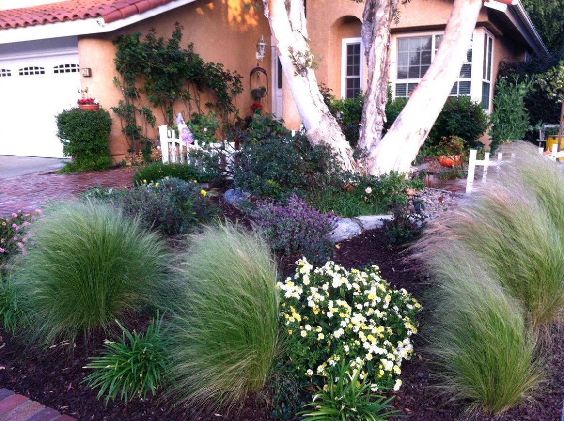 Front Yard Landscaping Zone 9 Karen9s No Lawn Front Yard In ...
