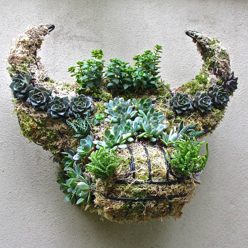 Garden ideas: Contemporary and quirky wall planters ~ Fresh Design ..