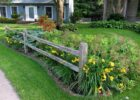 Garden ideas fence borders | Hawk Haven