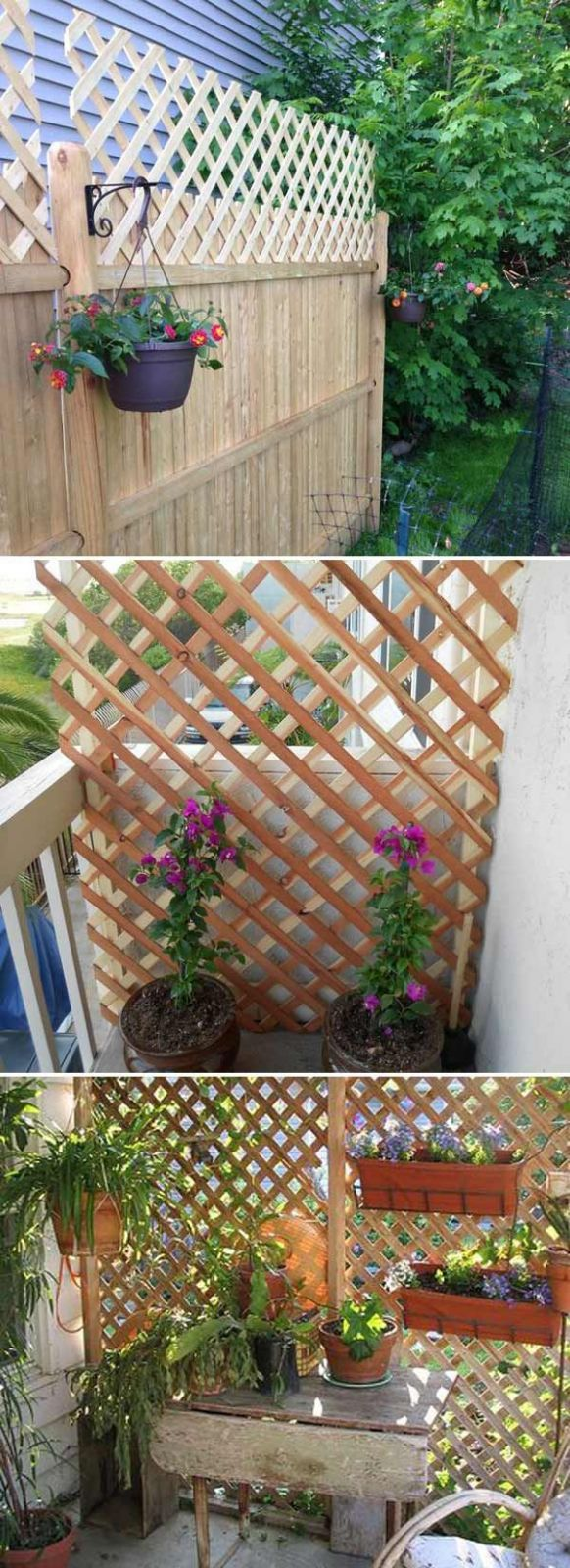 Get added privacy in your yard by building a trellis or lattice ..