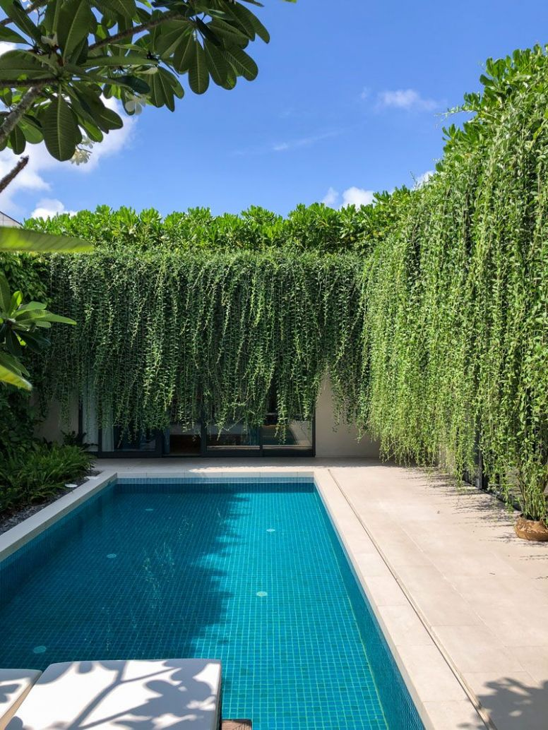 Hanging Gardens Create A Private Oasis For These Modern Villas ..