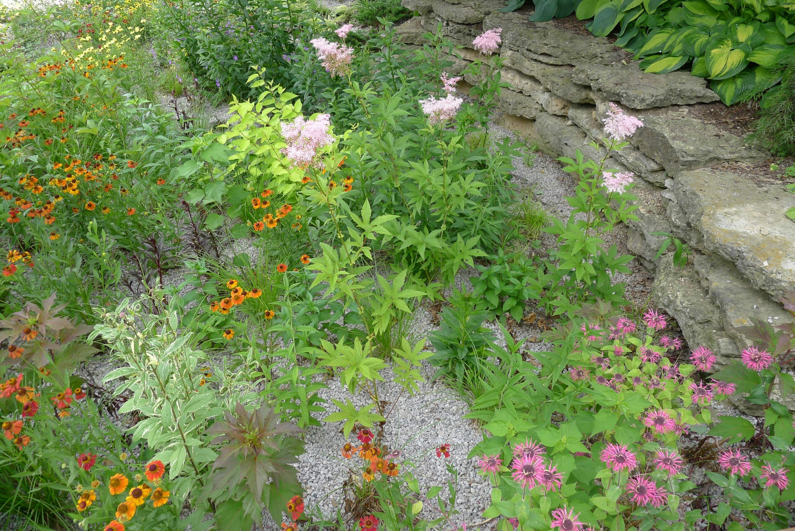 How to Build a Rain Garden | Plants and Designs | The Old Farmer's ...