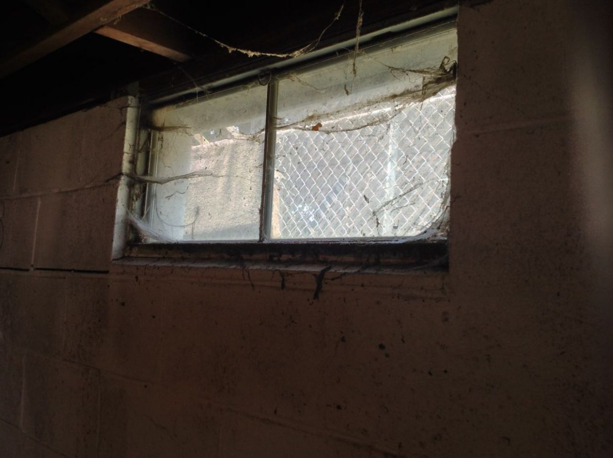 How to Fix the Top 12 Basement Window Problems - window exhaust ideas