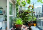 Inspiring balcony herb garden ideas just on shopyhomes.com | Small ...
