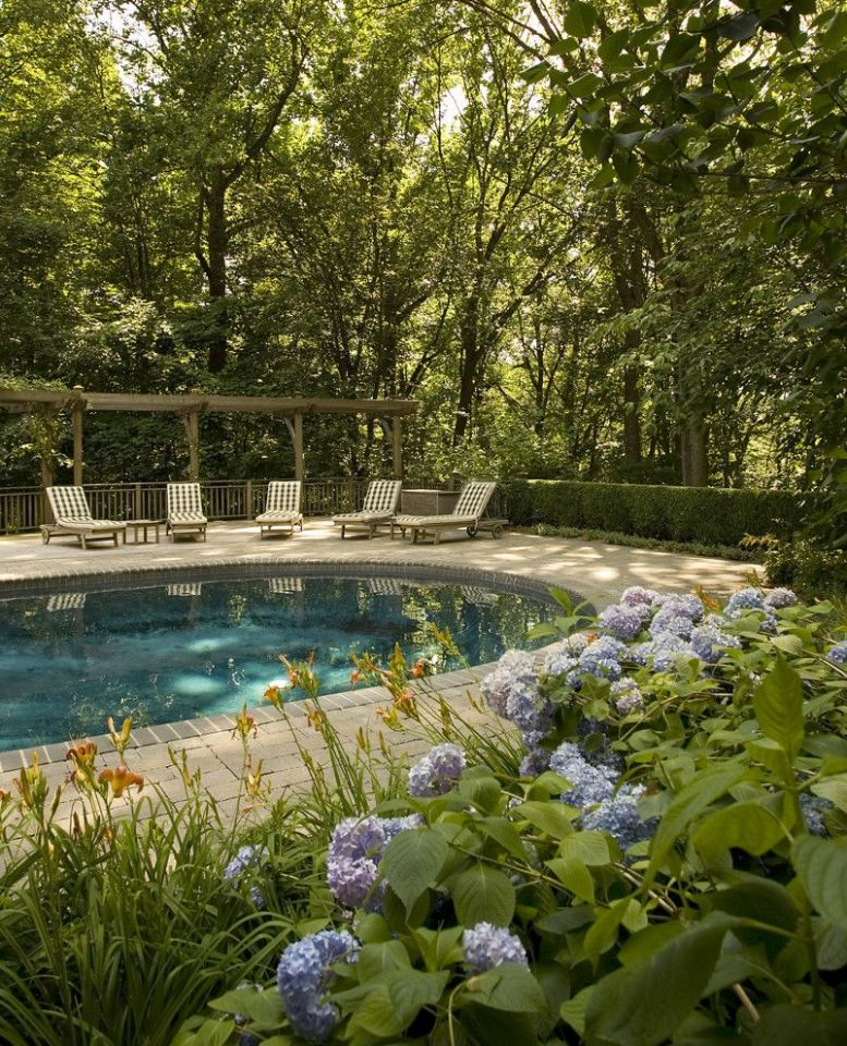 landscape around zone 8 pool | Glorious How To Landscape Around A ..