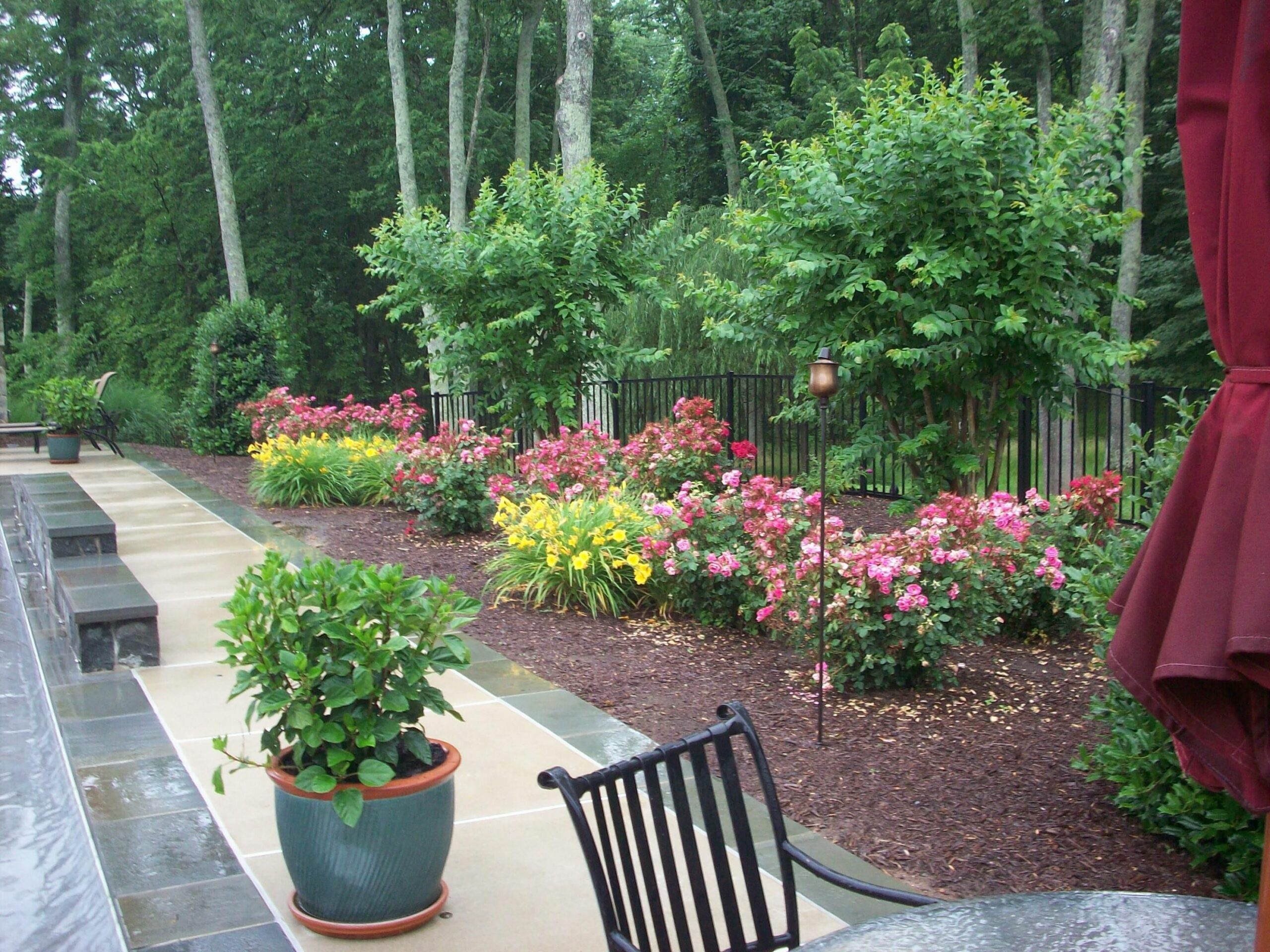 landscape ideas for full west sun zone 9 front yards - Google ...