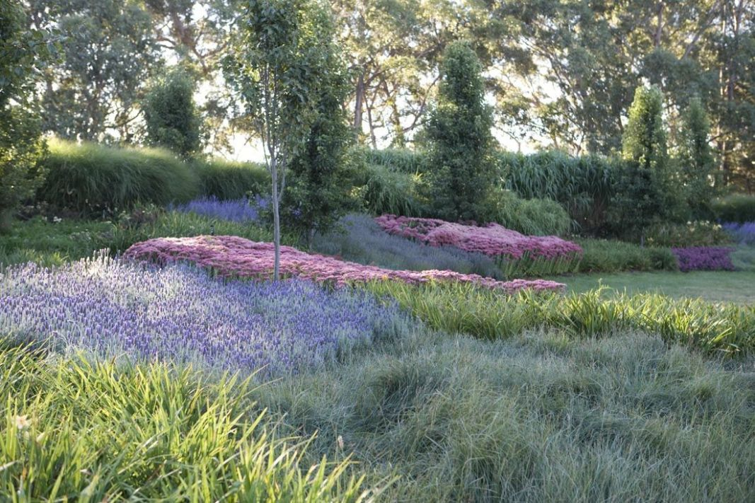 Landscaping Ideas: 12 Lavender Gardens Around the World - Gardenista - garden ideas lavender