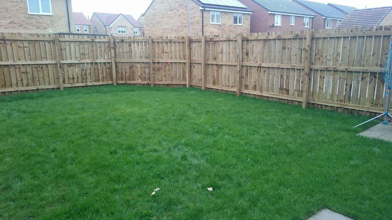 New build house looking for ideas for the garden — BBC Gardeners ..