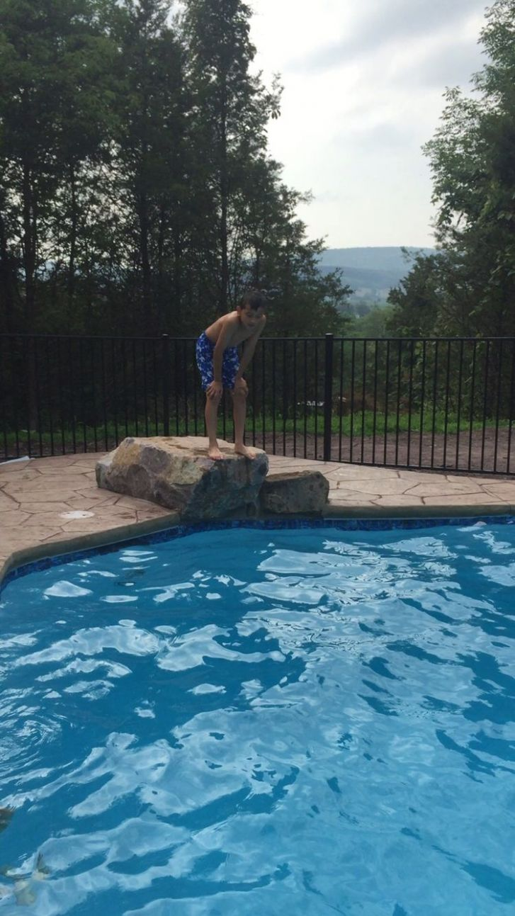 Pool jumping rock | Pool landscaping, Above ground pool ...