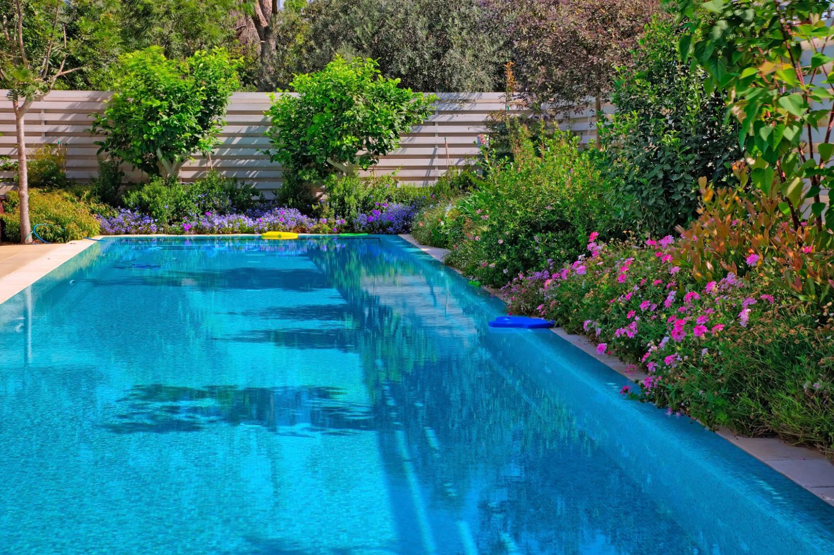 Poolside Gardens - What Are Some Poolside Plants - pool landscaping ideas for privacy